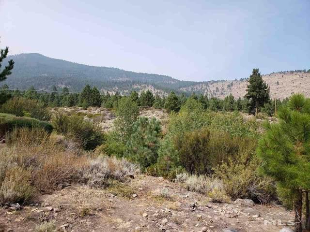 5785 Lausanne Drive, Reno, NV 89511 (MLS #200013156) :: Ferrari-Lund Real Estate