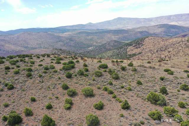 2,240 acres Microwave,Jay Bird,Pond Peak, Reno, NV 89510 (MLS #200013516) :: Theresa Nelson Real Estate