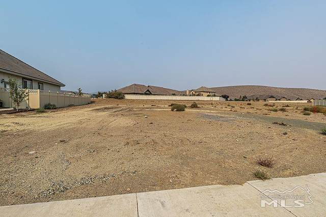 227 Cecina Drive, Dayton, NV 89403 (MLS #200013783) :: Craig Team Realty