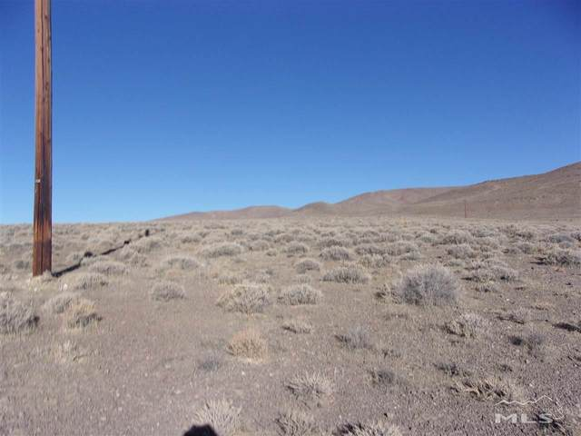 1795 Highway 95A, Silver Springs, NV 89429 (MLS #200014525) :: Theresa Nelson Real Estate