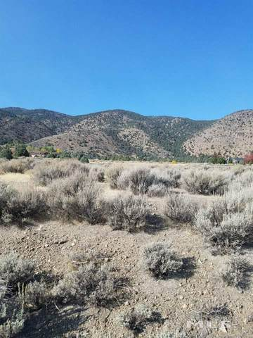 1534 Bolton Loop, Gardnerville, NV 89410 (MLS #200014760) :: Chase International Real Estate