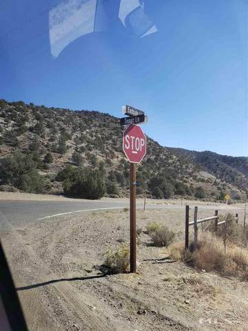2849 Fence Line Road, Topaz, NV 89444 (MLS #200015237) :: NVGemme Real Estate