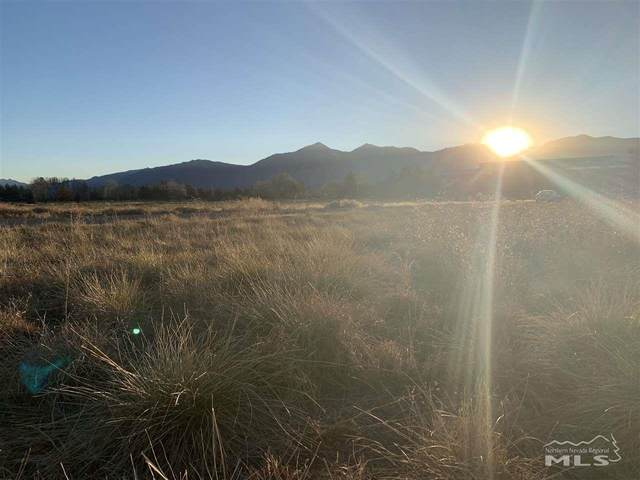 1516 Chance Rd, Gardnerville, NV 89410 (MLS #200015436) :: The Mike Wood Team