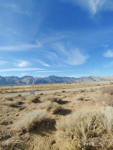 40 Hawkview Road, Wellington, NV 89444 (MLS #200016281) :: The Mike Wood Team