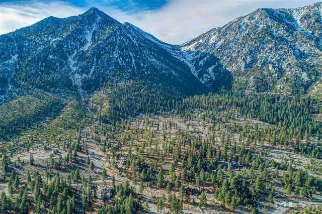 490 Natures Edge Rd, Gardnerville, NV 89460 (MLS #200016924) :: NVGemme Real Estate