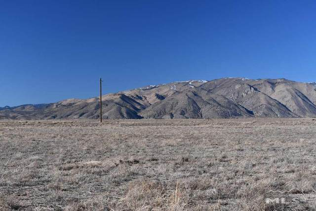 134 Hudson Aurora Rd, Smith, NV 89444 (MLS #200017097) :: The Mike Wood Team