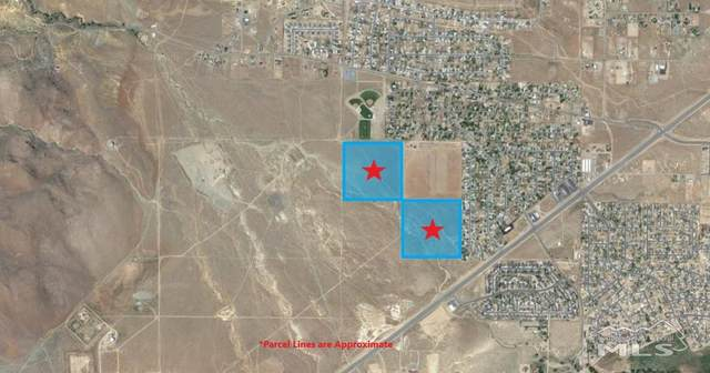 Vacant Land Apn 016-401-03, Dayton, NV 89403 (MLS #210000303) :: Craig Team Realty