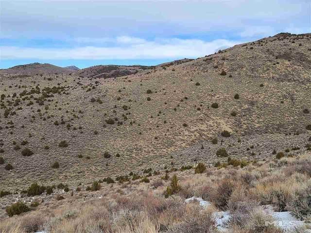 Pond Peak Rd, Reno, NV 89502 (MLS #210000373) :: NVGemme Real Estate