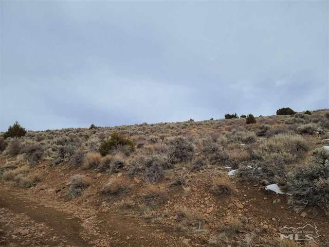 0 Pond Peak Rd, Reno, NV 89502 (MLS #210000374) :: Ferrari-Lund Real Estate