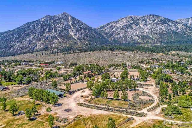 462 Dresden Lane, Gardnerville, NV 89460 (MLS #210000376) :: NVGemme Real Estate