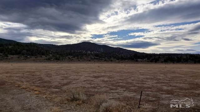 2557 Leviathan Mine Rd, Gardnerville, NV 89410 (MLS #210000453) :: NVGemme Real Estate