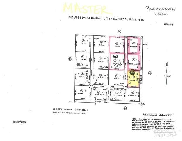 100 Coyote Ln, Winnemucca, NV 89445 (MLS #210000678) :: Theresa Nelson Real Estate