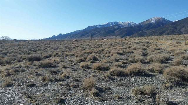 102 Ophir Road, Kingston, NV 89310 (MLS #210000867) :: NVGemme Real Estate