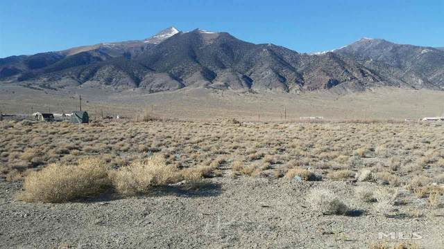 4 Modoc Lane, Kingston, NV 89310 (MLS #210000868) :: NVGemme Real Estate