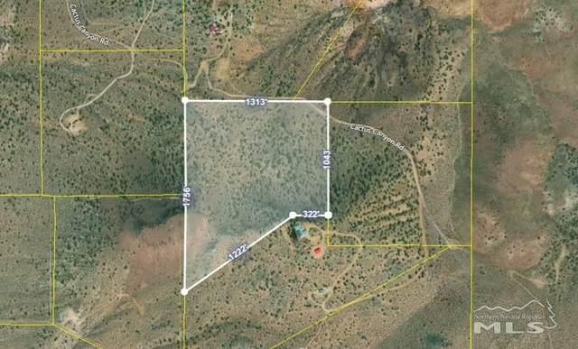 4690 Cactus Canyon Rd., Reno, NV 89510 (MLS #210000938) :: The Mike Wood Team