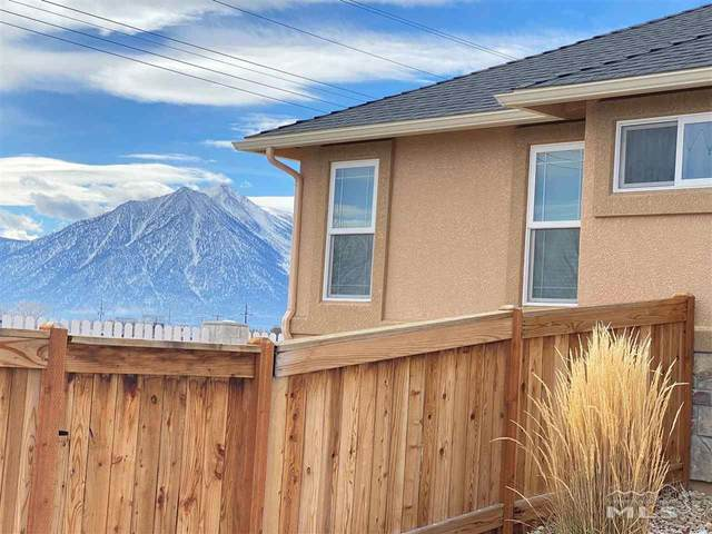 1702 Rosso Crt, Minden, NV 89423 (MLS #210000958) :: The Mike Wood Team