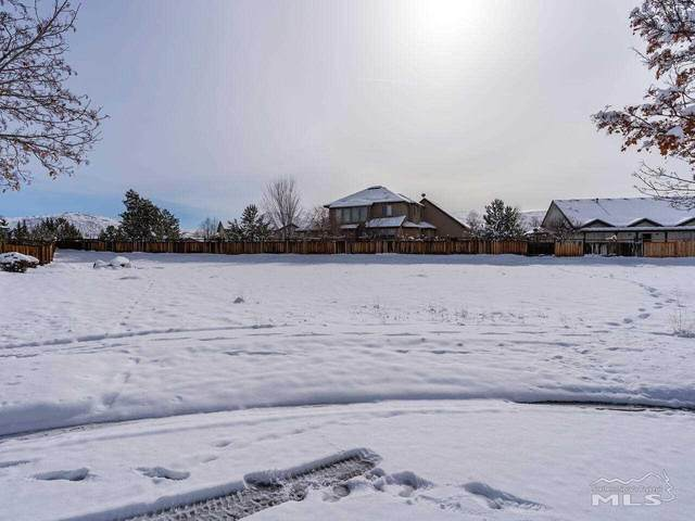 3333 Poco Star Ct., Sparks, NV 89436 (MLS #210001079) :: The Mike Wood Team