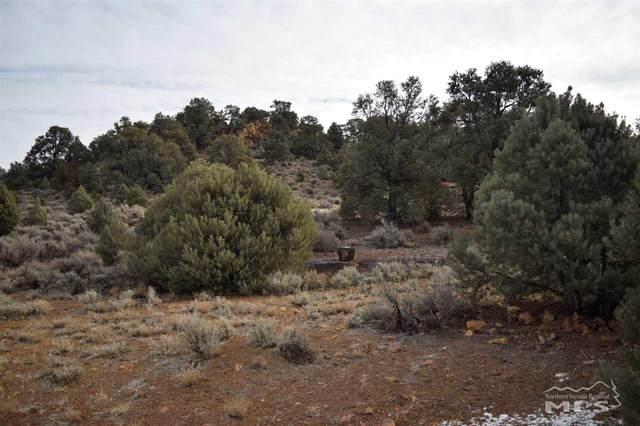 0 Temple Hill Rd, Reno, NV 89521 (MLS #210001235) :: NVGemme Real Estate