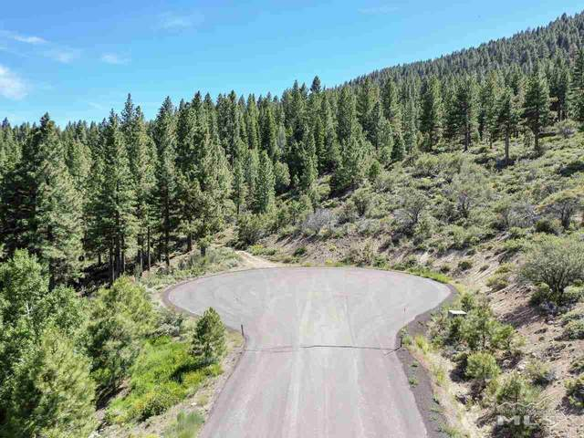 0 Abies Road, Reno, NV 89511 (MLS #210001463) :: NVGemme Real Estate
