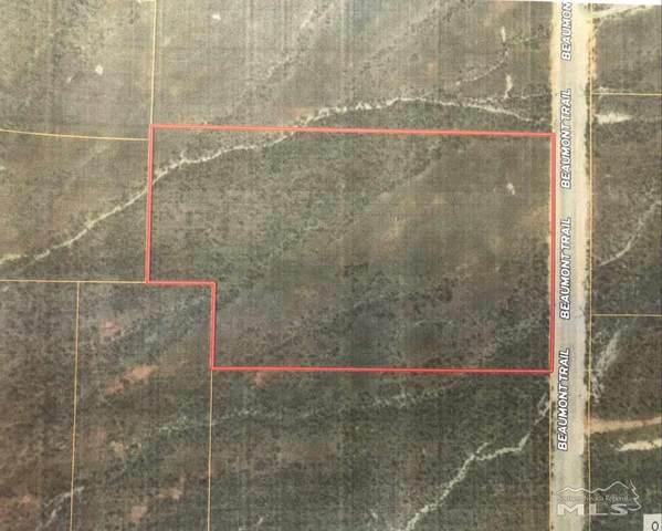 12455 Beaumont Trail, Lovelock, NV 89419 (MLS #210001495) :: NVGemme Real Estate