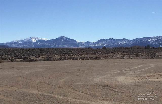 79 Desert View Drive, Smith, NV 89430 (MLS #210001720) :: NVGemme Real Estate