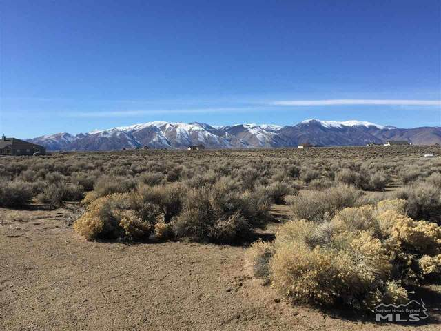 66 Canary Court, Smith, NV 89430 (MLS #210001721) :: NVGemme Real Estate
