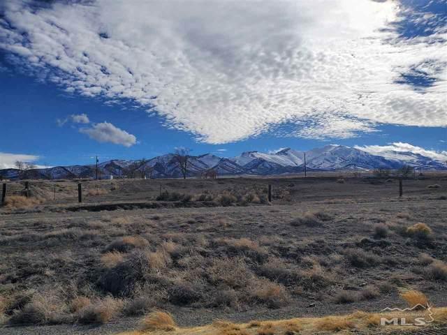 98 Prince Royal Canyon Road, Imlay, NV 89418 (MLS #210001825) :: NVGemme Real Estate