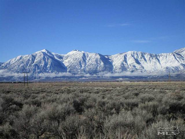 2013 East Valley Road, Minden, NV 89423 (MLS #210001829) :: The Mike Wood Team