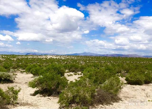 003-691-25 Churchill County, Fallon, NV 89406 (MLS #210002066) :: NVGemme Real Estate