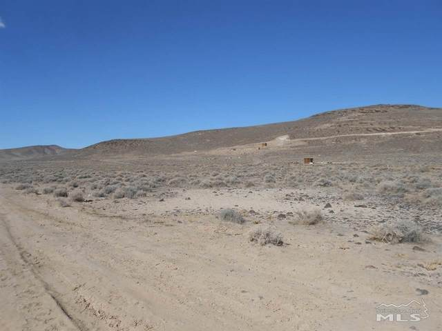 3180 Lizzie Lane, Silver Springs, NV 89429 (MLS #210002141) :: Theresa Nelson Real Estate