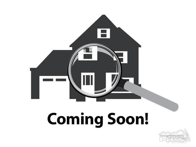 2326 Blushing Rock Drive, Reno, NV 89521 (MLS #210002437) :: Theresa Nelson Real Estate