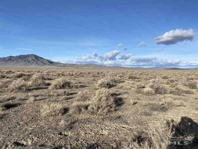 09 Jungo Pronto Road Area, Winnemucca, NV 89445 (MLS #210002864) :: Theresa Nelson Real Estate