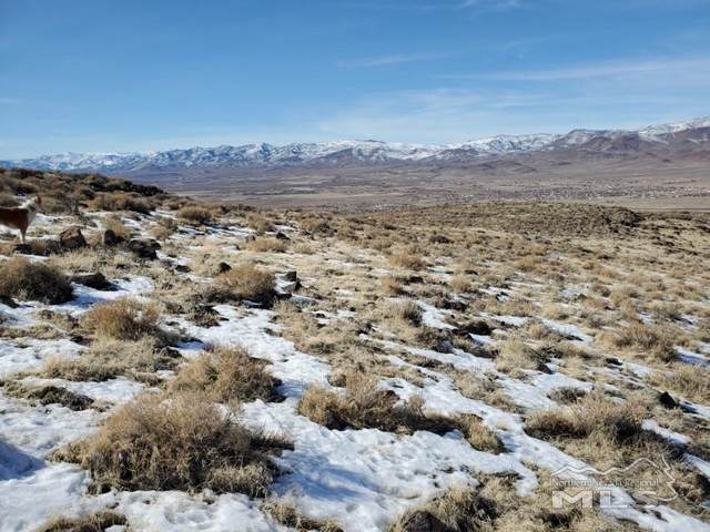 000 Micro Road, Silver Springs, NV 89429 (MLS #210002937) :: Colley Goode Group- eXp Realty