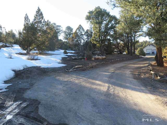 21779 Sullivan Road, Reno, NV 89510 (MLS #210003418) :: NVGemme Real Estate