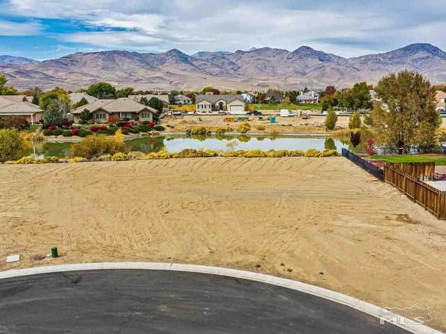 405 Kingsbarn Ct, Dayton, NV 89403 (MLS #210003431) :: NVGemme Real Estate