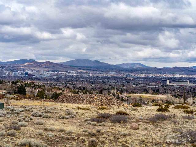 490 Anitra Drive, Reno, NV 89511 (MLS #210003504) :: Theresa Nelson Real Estate