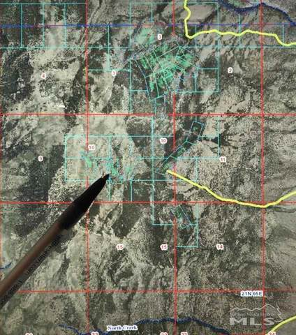 Silver Canyon Mining District, Ely, NV 89301 (MLS #210003735) :: Chase International Real Estate