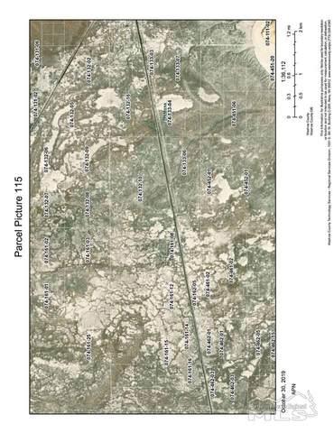 115 N Fish Springs Rail Road Track, Gerlach, NV 89412 (MLS #210003930) :: Theresa Nelson Real Estate