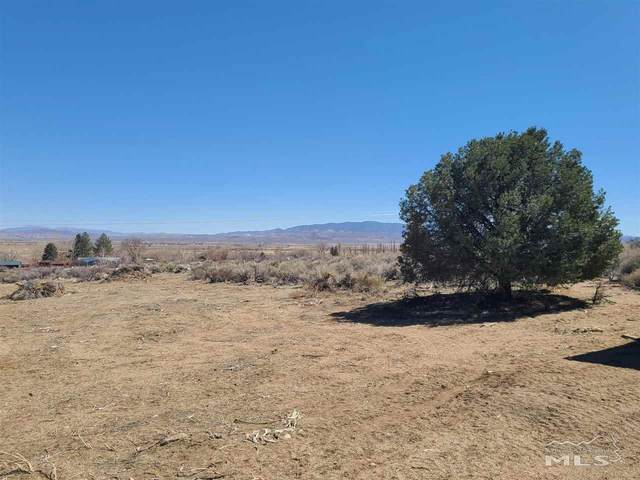 155 Upper Colony, Smith, NV 89444 (MLS #210004234) :: Morales Hall Group