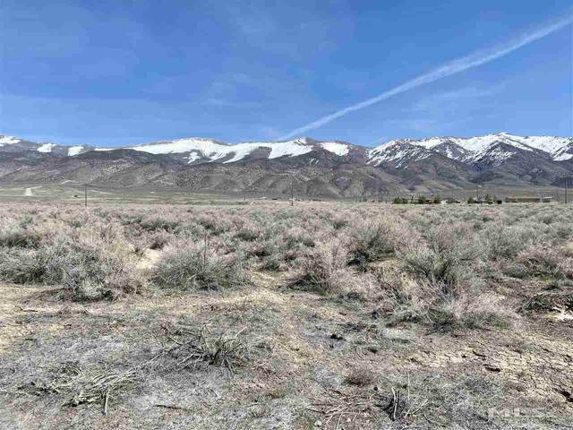 21010 Walker Lake Road, Lovelock, NV 89419 (MLS #210004246) :: The Mike Wood Team