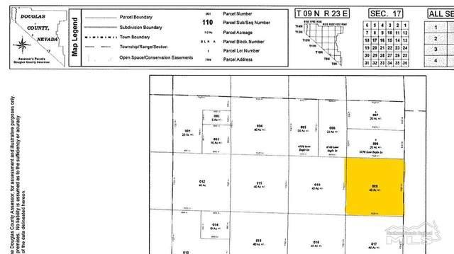 Parcel 9 Lone Eagle, Topaz, NV 89410 (MLS #210004258) :: Morales Hall Group