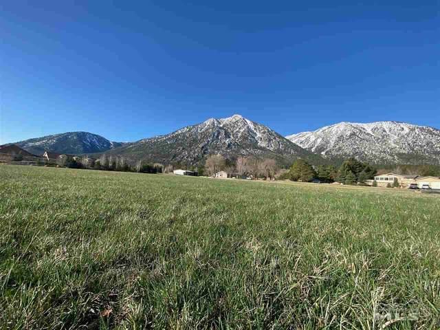 717 Indian Trail Road, Gardnerville, NV 89460 (MLS #210004274) :: NVGemme Real Estate