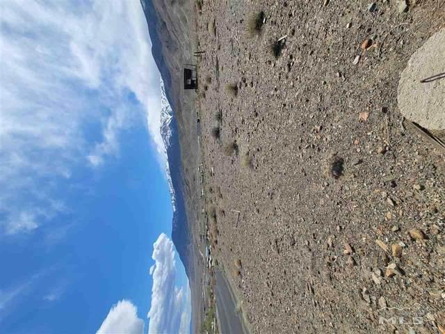271 Summitview Dr., Walker Lake, NV 89415 (MLS #210004334) :: NVGemme Real Estate