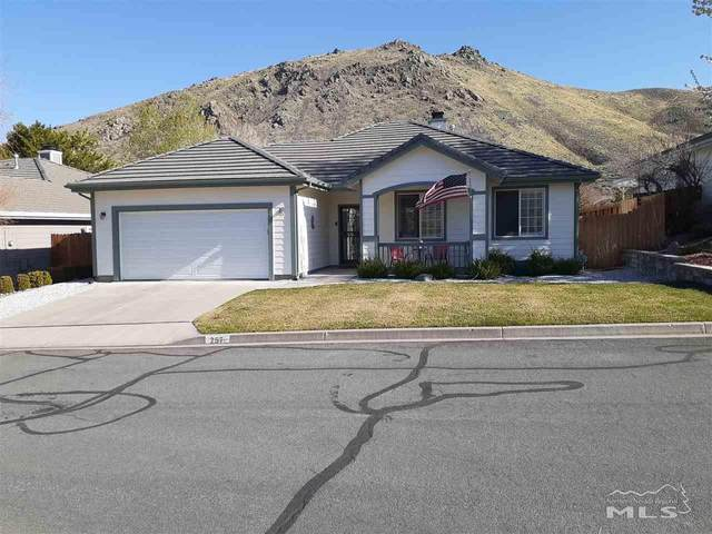 257 Coventry  Drive, Carson City, NV 89703 (MLS #210004726) :: The Mike Wood Team