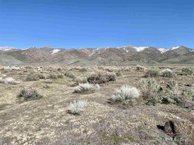 11175 Park Valley Dr, Lovelock, NV 89419 (MLS #210004737) :: The Mike Wood Team