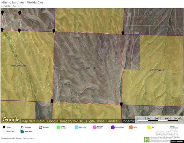 15 Imlay Canyon W/ Minerals, Imlay, NV 89419 (MLS #210004744) :: The Mike Wood Team