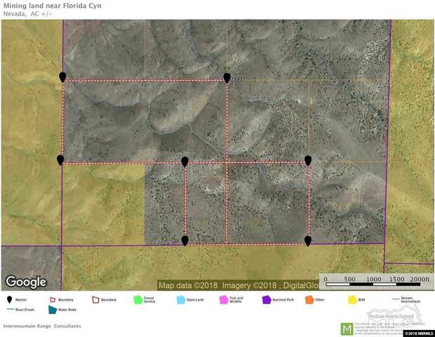 08 Imlay Canyon With Mineral Rights, Imlay, NV 89419 (MLS #210004746) :: The Mike Wood Team