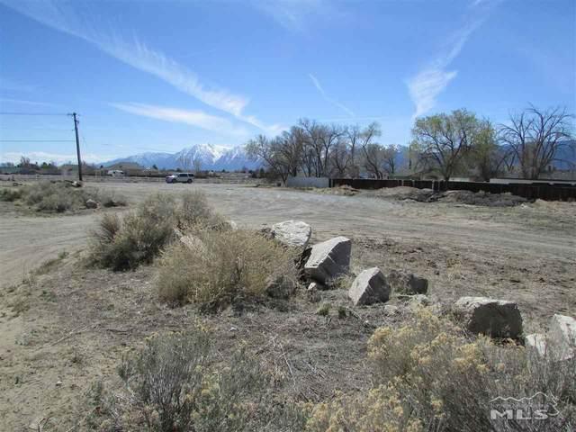 009 Vicki, Minden, NV 89423 (MLS #210004808) :: Vaulet Group Real Estate