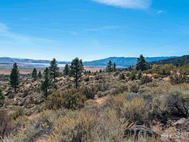 0 Joy Lake Road, Washoe Valley, NV 89704 (MLS #210005106) :: Theresa Nelson Real Estate