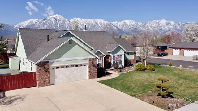 1237 Springtime Dr., Gardnerville, NV 89460 (MLS #210005113) :: Theresa Nelson Real Estate